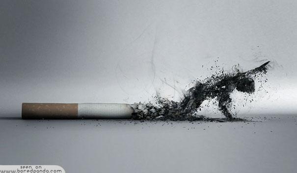 iklan kreatif anti rokok yang dapat membuat anda berhenti merokok asap rokok 40 iklan kreatif Anti Rokok yang dapat membuat anda berhenti merokok
